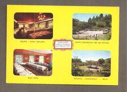 RISTORANTE DEFILIPPI  BUSSOLINO DI GASSINO  TORINO VEDUTE CARTOLINA - Hotels & Restaurants