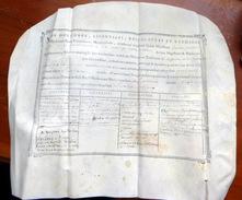 GRAND DIPLOME DE FIN D'ETUDE DE MEDECINE DELIVRE A MONTPELLIER  EN DECEMBRE 1786 SUR VELIN RIGIDE NOMBREUSES ANNOTATIONS - Historical Documents