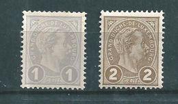 Luxembourg Timbres De 1895 N°69 Et 70  Neufs ** Cote 13€50 - 1895 Adolphe De Profil