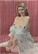 Pin-Up - Années 50/ Year 50 - Femme / Nue Girl / Woman-Frau /Erotic-Erotik - 16 - Pin-Ups