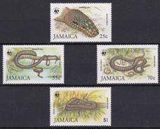 W.W.F.Série De 4 Timbres Neufs  N° 604/7  - Jamaïca -  Jamaican Boa - W.W.F.