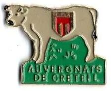 AD3 - VACHE - AUVERGNATS DE CRETEIL - Verso : PIN'UP - Animals