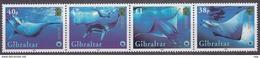 WWF - Domfil - 2006 - GIBRALTAR - Nr 380 - MNH** - Unused Stamps