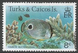 Turks & Caicos Islands. 1978 Fish. 8c Used. SG 520A - Turks And Caicos