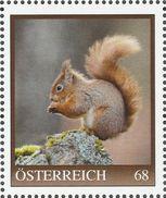"""AUSTRIA PERSONALISIERTE BRIEFMARKE """"Eichhörnchen"""" 8121477 Stück MNH / ** / Postfrisch - Personalisierte Briefmarken"""