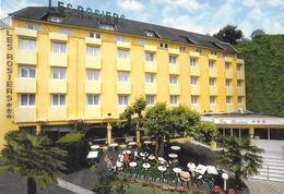LOURDES - Hôtel Des Rosiers - Rue St Dominique - Lourdes