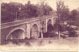 CPA  - 34 - BALARUC Les BAINS - ISSANKA PARC - Le Viaduc Du Chemin De Fer Du Midi - Francia