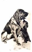 #& Petit Chien Avec Gros Chien - Dogs