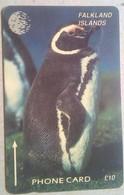 Falkland Islands 6CWFA Penguin 10 Pounds - Falkland Islands