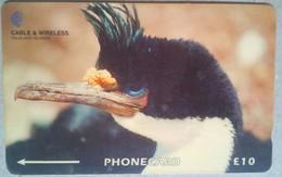 Falkland Islands 314CFKA King Commonant 10 Pounds - Falkland Islands