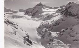 Sulztal-Ferner - Wilde Leck (2277) * 17. 3. 1954 - Längenfeld