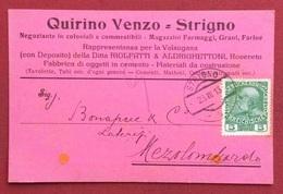 STRIGNO   SU CARTOLINA PUBBLICITARIA QUIRINO VENZO Coloniali E Alimentari  PER MEZZOLOMBARDO IN DATA 23/8/1913 - Trente & Trieste