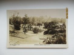 AUSTRALIA  SYDNEY BOTANICAL GARDENS , ROSE SERIES , OLD POSTCARD , 0 - Sydney