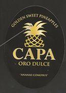 # PINEAPPLE CAPA (type 1) Fruit Tag Balise Etiqueta Anhanger Costa Rica Ananas Pina - Fruits & Vegetables