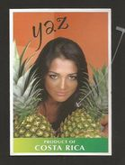 # PINEAPPLE YAZ Type 3 WITHOUT SIZE Fruit Tag Balise Etiqueta Anhanger Ananas Pina Costa Rica - Fruits & Vegetables