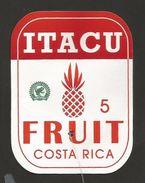 # PINEAPPLE ITACU Round Edges Size 5 Fruit Tag Balise Etiqueta Anhanger Ananas Pina Costa Rica - Fruits & Vegetables