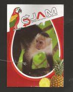 # PINEAPPLE JAM - Fruit Tag Balise Etiqueta Anhanger Ananas Pina Monkey Singe Affe Perroquet Parrot Costa Rica - Fruits & Vegetables