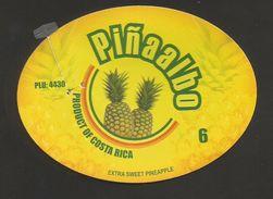 # PINEAPPLE PINAALBO Size 6 Fruit Tag Balise Etiqueta Anhanger Ananas Pina Costa Rica - Fruits & Vegetables
