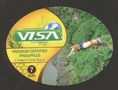 # PINEAPPLE VISA BUNGEE Type 2 Size 7 - Fruit Tag Balise Etiqueta Anhanger Ananas Pina Costa Rica Bungee Jumping Sport - Fruits & Vegetables
