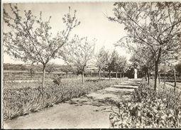 49 -  CHAUDRON EN MAUGES  - Jardin Du Couvent  ( Cpsm Gf) 265 - France