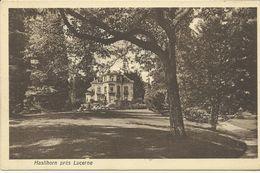Haslihorn Prés Lucerne    (6644) - LU Lucerne