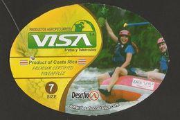 # PINEAPPLE VISA RAFTING Type 3 Size 7 - Fruit Tag Balise Etiqueta Anhanger Ananas Pina Costa Rica Dinghy Rafting Sport - Fruits & Vegetables