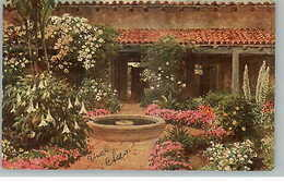 TUCK Oilfacism GLORIOUS CALIFORNIA #3513 Flowered Patio C1910 Postcard - Illustratoren & Fotografen