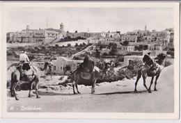 BETHLEHEM ( BETHLEEM - BETLEMME ) PANORAMA DE LA VILLE - CHAMEAUX - 2 SCANS - - Israel