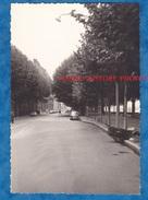 Photo Ancienne - LYON 3e - Quai Victor Augagneur - Lampadaire Au Dessus Des Arbres - Automobile Panhard ? - Cars