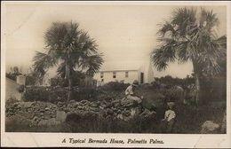 Bermuda - Home & Boys Palm Trees C1910 Real Photo Postcard - Postkaarten
