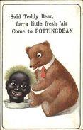 Teddy Bear & Chia Pet Black Head Comic Come To Rottingdean C1920 Postcard - Black Americana