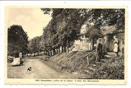 DAVERDISSE Lallee Des Marronniers  Animee - Daverdisse