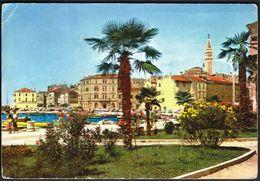 Croatia Rovinj 1964 / Church , Palm Tree - Kroatien
