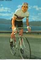 B 1501 - Sport, Ciclismo, Merckx - Cyclisme