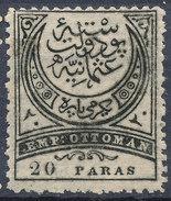 Stamp Turkey 1881  20pa  Mint Lot#68 - Unused Stamps