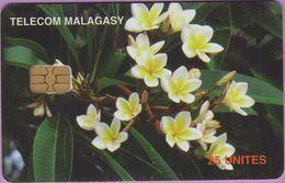 Télécarte Madagascar °° Fleurs-photo Acker - Madagascar