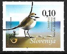 Slovenia 2015 MNH Specimen - Kentish Plover ( Charadrius Alexandrinus) F57 - Otros