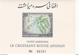 Afghanistan,Yvert BF 35 1962 Red Cross Imperforated Souvenir Sheet MNH - Afghanistan