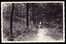 """LOUISE MARIE ( Etikhove - Nukerke - Ronse - Maarkedal ) - Wandeling Naar De """" Romeinse Steen """" - Niet Courant - Maarkedal"""