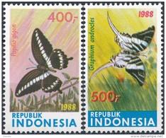 Indonesië  Butterflies - Vlinders