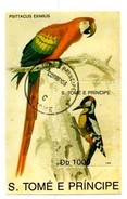 SaoTomé E Principe. Psittacus Eximius. Db 100. Minisheet - Sao Tome En Principe