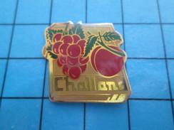 Pin611c Pin's Pins : Rare Et Belle Qualité ALIMENTATION / RAISIN ABRICOT FRUITS CHALLANS - Food