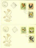 BULGARIA 1961 FAUNA Animals BIRDS - 2 FDC - FDC