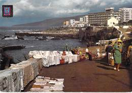 ** Lote De 4 Postales ** ESPANA Espagne Spain - ISLAS CANARIAS : Varias Postales - CPSM GF ( Spanien Spange ) - Espagne