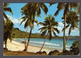 SEYCHELLES Grand Anse Mahe  FG V SEE 2 SCANS Stamp Doll - Seychelles