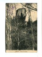 Cp - OISELAY (70) - Ruines Du Chateau - Autres Communes