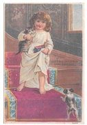 Victorian Trade Card Hunters Invisible Medicated Face Powder Girl Kitten Puppy Philadelphia PA - Trade Cards