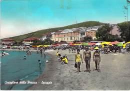 ITALIA Italie ( Toscana Grosseto ) CASTIGLIONE DELLE PESCAIA Spiaggia - Jolie CPSM GF Colorisée 1960's - Italy Italien - Grosseto