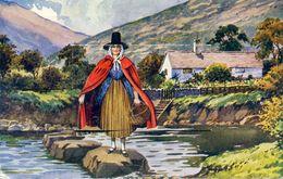PAYS DE GALLES - Souvenir Of North Wales - Carte à Système, Complet - Pays De Galles