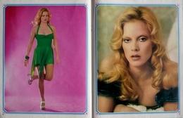 POSTER Double Faces  425 X 275  - Chanteuse   SYLVIE VARTAN - Posters